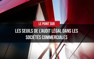 Gasbaoui Avocats • Les seuils de l'audit légal